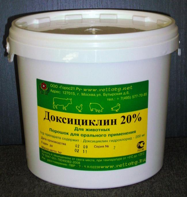 Лечение сальмонеллёза в домашних условиях